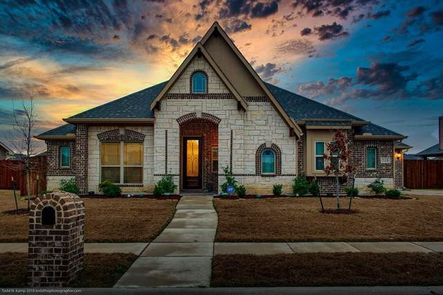 518 Stillwater Drive, Waxahachie, TX 75165 (MLS #14278968) :: The Hornburg Real Estate Group