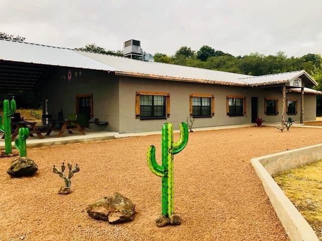 175 Lakeside Drive, Brownwood, TX 76801 (MLS #14279060) :: Frankie Arthur Real Estate