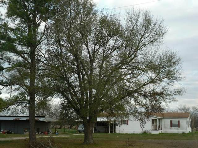 12365 Fm 642, Dawson, TX 76639 (MLS #14279114) :: All Cities Realty