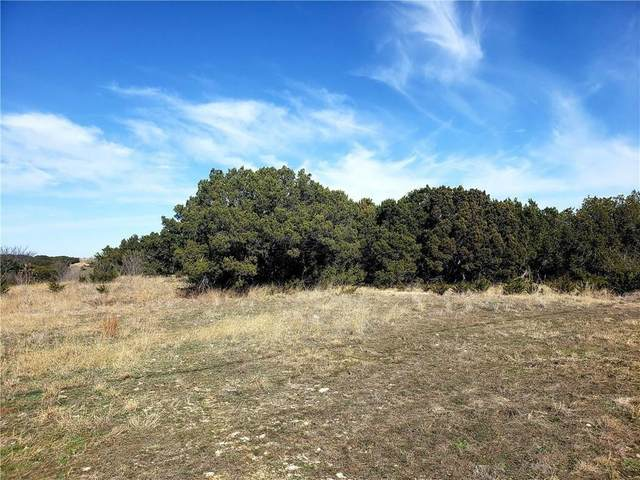 TBD 2 Hilltop Drive, Cleburne, TX 76033 (MLS #14279214) :: The Chad Smith Team