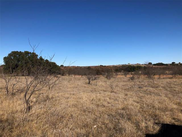Lot 109 Comanche Lake Rd., Comanche, TX 76442 (MLS #14280623) :: RE/MAX Landmark