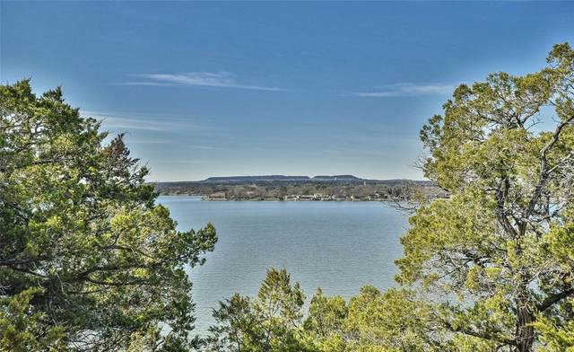 TBD Grand Point Court, Granbury, TX 76049 (MLS #14280766) :: The Mitchell Group