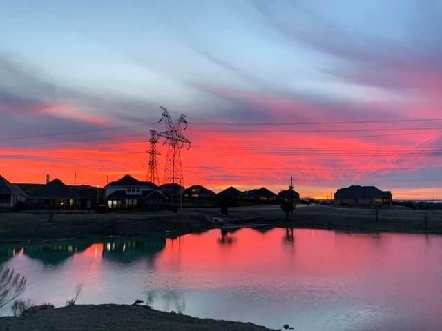 4533 Wilderness Pass, Fort Worth, TX 76262 (MLS #14280879) :: Tenesha Lusk Realty Group