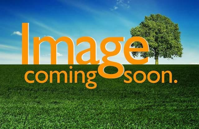 6633 Betlam Street, Mckinney, TX 75070 (MLS #14281008) :: Hargrove Realty Group