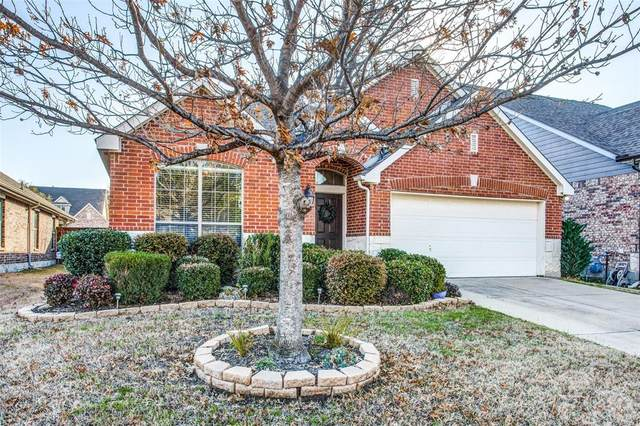 2811 Lacompte Drive, Dallas, TX 75227 (MLS #14282318) :: Vibrant Real Estate
