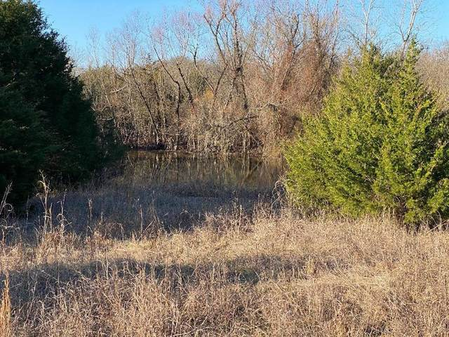 TBD County Rd 1003, Greenville, TX 75401 (MLS #14282633) :: The Kimberly Davis Group