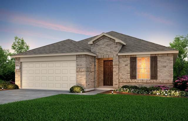 1611 Luckenbach Drive, Forney, TX 75126 (MLS #14283071) :: The Heyl Group at Keller Williams