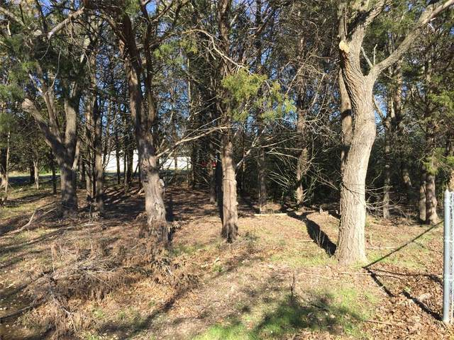 538 Lot Choctaw Drive, Gordonville, TX 76245 (MLS #14283208) :: RE/MAX Landmark