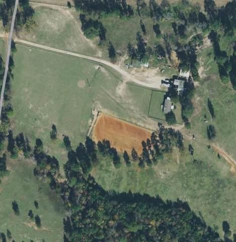 2200 County Road 2501, Alto, TX 75925 (MLS #14283230) :: The Kimberly Davis Group