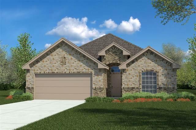 127 Wagon Mound Drive, Waxahachie, TX 75167 (MLS #14283668) :: Vibrant Real Estate