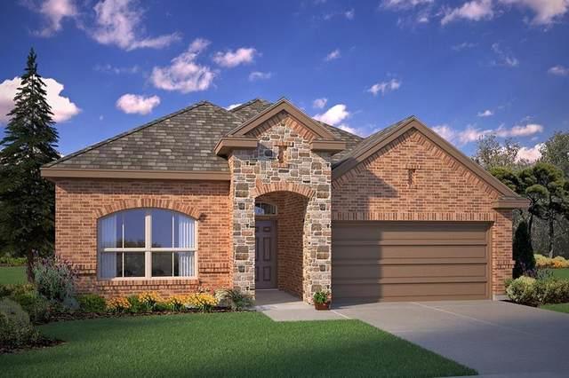 150 Wagon Mound Drive, Waxahachie, TX 75167 (MLS #14283712) :: Team Tiller