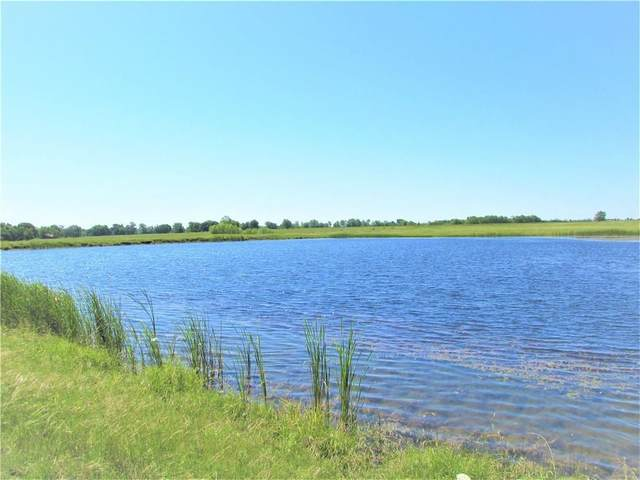 TBD NW W Side State Hwy 24, Cooper, TX 75432 (MLS #14284501) :: Team Tiller