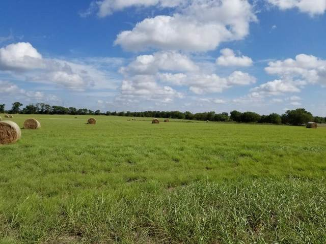 TBD3 Rose Hill Road, Whitewright, TX 75491 (MLS #14284775) :: Baldree Home Team