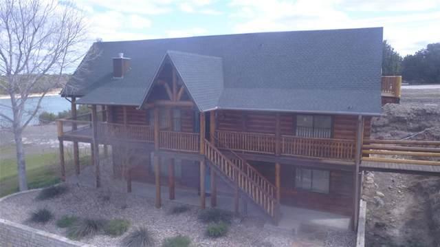 250 Blue Marlin Court, Bluff Dale, TX 76433 (MLS #14284785) :: The Mauelshagen Group
