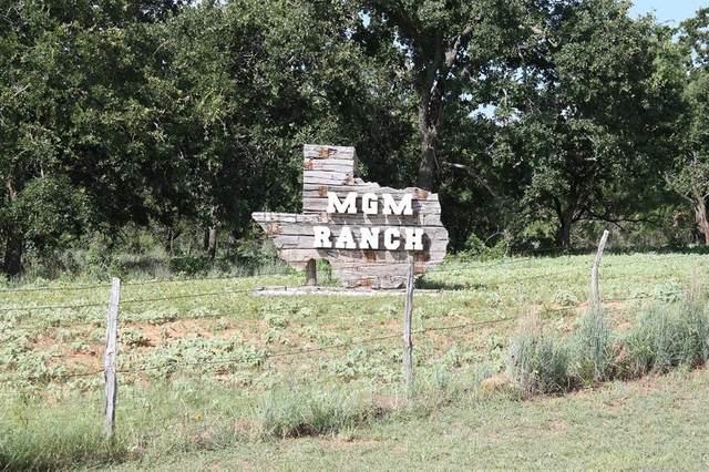 4021 Fm 45, Richland Springs, TX 76871 (MLS #14285131) :: NewHomePrograms.com LLC
