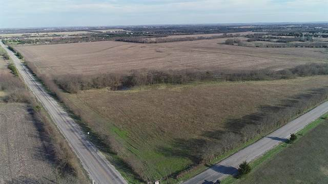 Lot 6 County Road 580, Blue Ridge, TX 75424 (MLS #14285330) :: Lynn Wilson with Keller Williams DFW/Southlake