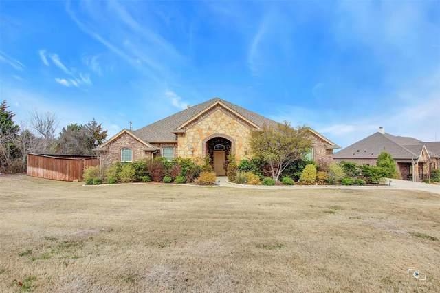 101 Red Eagle Trail, Hudson Oaks, TX 76087 (MLS #14285527) :: The Kimberly Davis Group