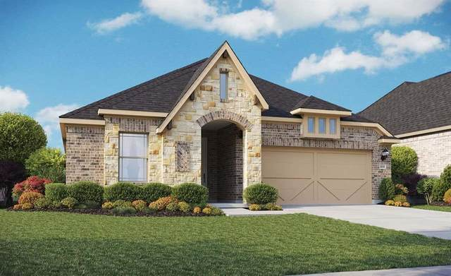 1104 Spanish Dove Drive, Little Elm, TX 75068 (MLS #14286941) :: The Kimberly Davis Group