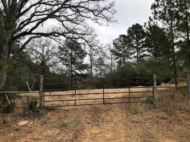 TBD Fm 2120/ Old Crockett Road, Grapeland, TX 75844 (MLS #14287991) :: The Kimberly Davis Group