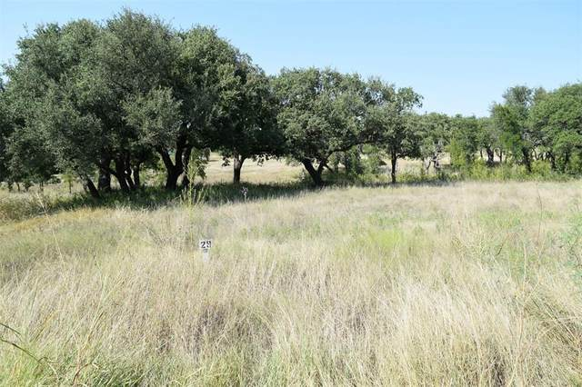 Lot 29 J.T. Lane, Lake Brownwood, TX 76801 (MLS #14288342) :: RE/MAX Landmark