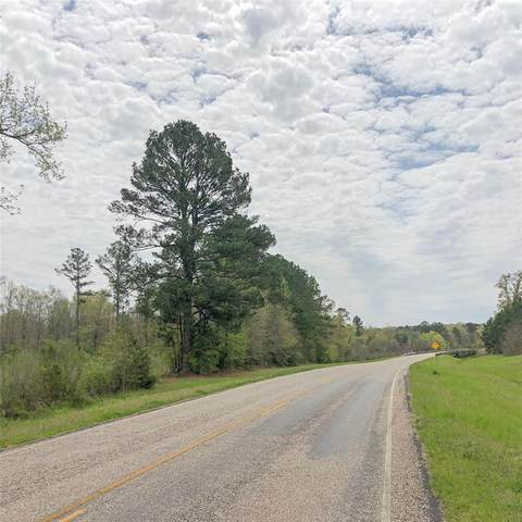 0 Hwy 248, Linden, TX 75657 (MLS #14288963) :: All Cities USA Realty