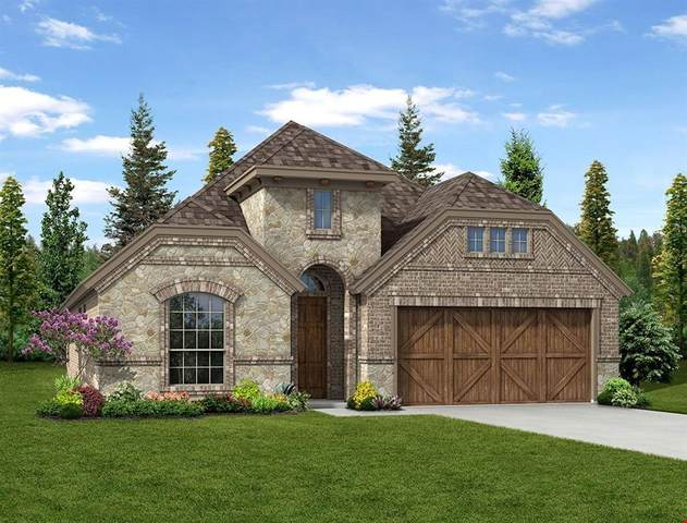 313 Lake Cove Drive, Little Elm, TX 75068 (MLS #14289312) :: Post Oak Realty
