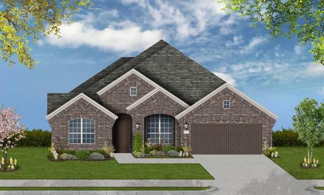 2805 Chablis Drive, Rowlett, TX 75088 (MLS #14289473) :: Justin Bassett Realty