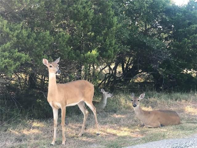 Lot 88 Cliffs Drive, Graford, TX 76449 (MLS #14289498) :: Team Hodnett