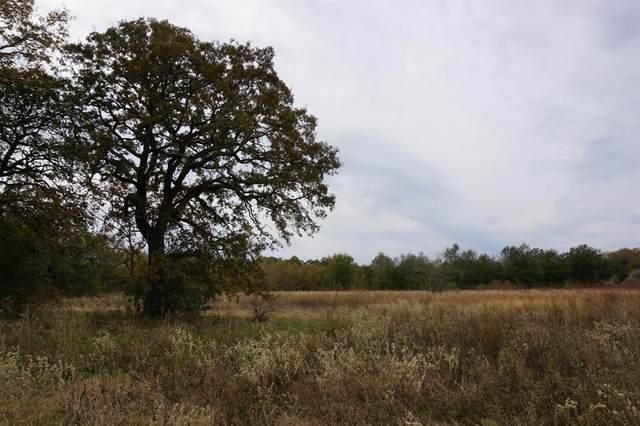 02 Cr 1315 Lane, Malakoff, TX 75148 (MLS #14289540) :: The Heyl Group at Keller Williams