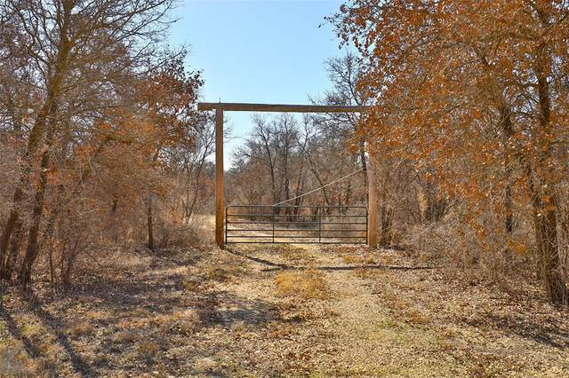 10258 County Road 335, Hawley, TX 79525 (MLS #14289560) :: The Mitchell Group