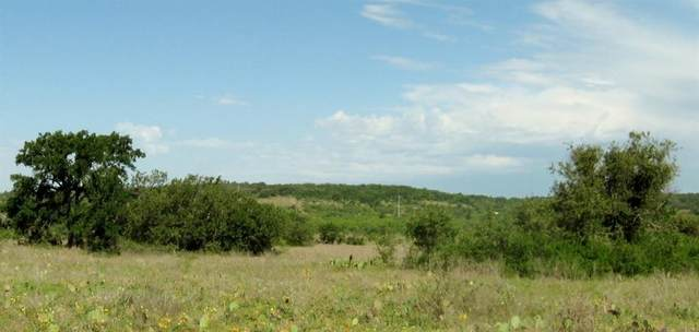 2005 County Road 134, Brownwood, TX 76801 (MLS #14290095) :: Justin Bassett Realty