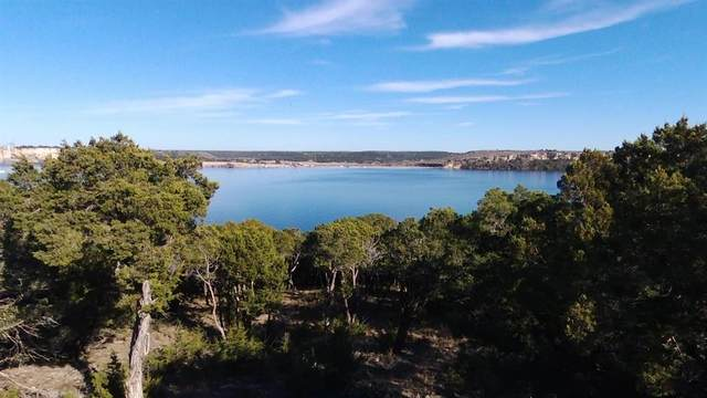 1151 Panorama Way, Possum Kingdom Lake, TX 76449 (MLS #14290278) :: Tenesha Lusk Realty Group