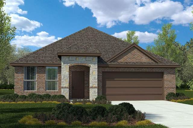 3531 Braylee Drive, Krum, TX 76249 (MLS #14290316) :: Trinity Premier Properties