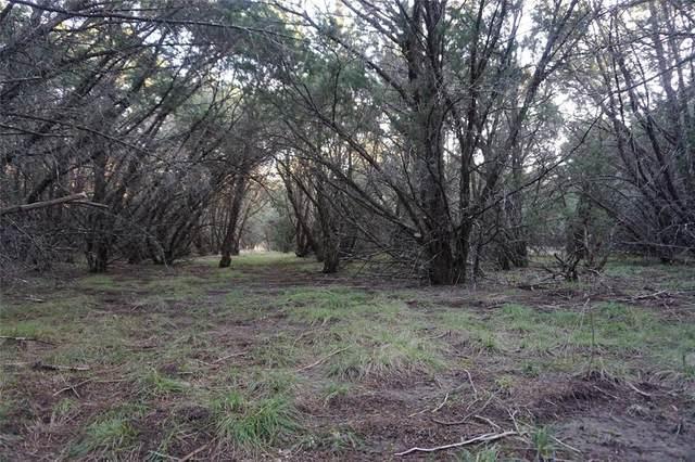 Lt 579 Canyon Wren, Possum Kingdom Lake, TX 76449 (MLS #14290388) :: Robbins Real Estate Group