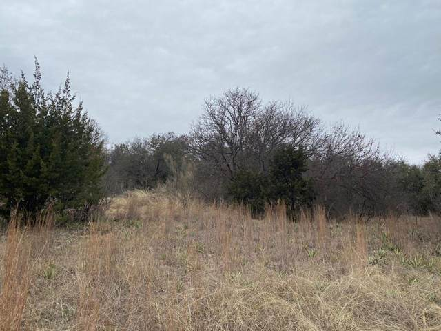 TBD County Road 606, Brownwood, TX 76801 (MLS #14290434) :: The Hornburg Real Estate Group