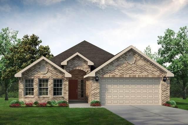 4013 Marana Drive, Granbury, TX 76048 (MLS #14290600) :: The Heyl Group at Keller Williams