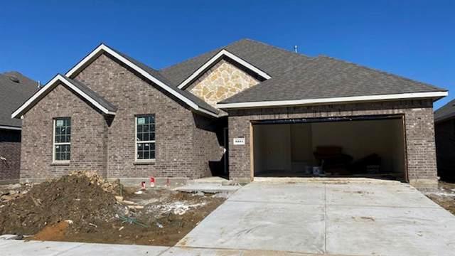 6221 Brunswick Drive, Celina, TX 75009 (MLS #14291826) :: Real Estate By Design