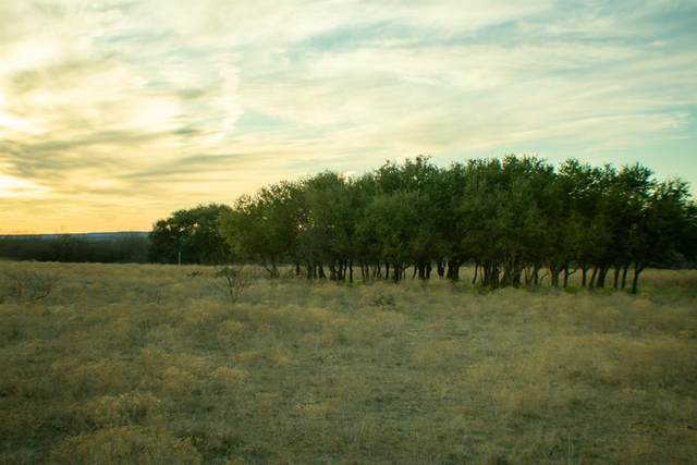 TBD County Rd 136, Albany, TX 76430 (MLS #14293081) :: The Chad Smith Team
