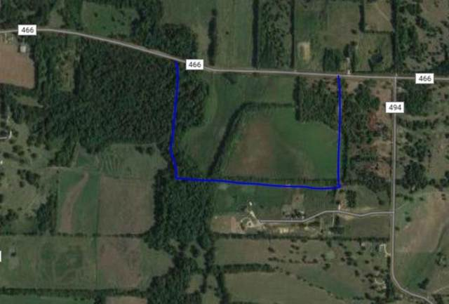 00 County Road 466, Princeton, TX 75407 (MLS #14295999) :: The Hornburg Real Estate Group