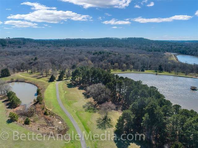 14423 Caddo Creek Circle, Larue, TX 75770 (MLS #14296977) :: The Daniel Team