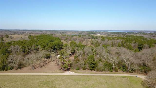 1559 An County Road 3051, Frankston, TX 75763 (MLS #14298331) :: The Kimberly Davis Group