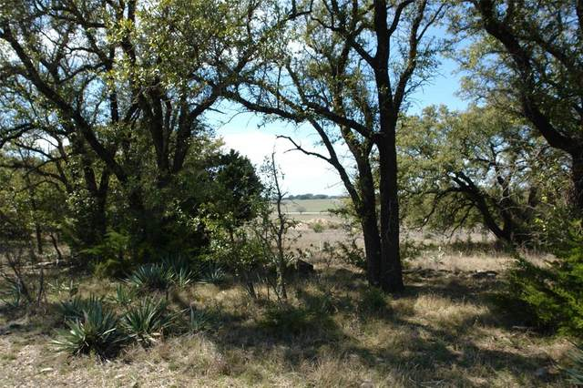 TBD Cr 505, Goldthwaite, TX 76844 (MLS #14299242) :: RE/MAX Landmark