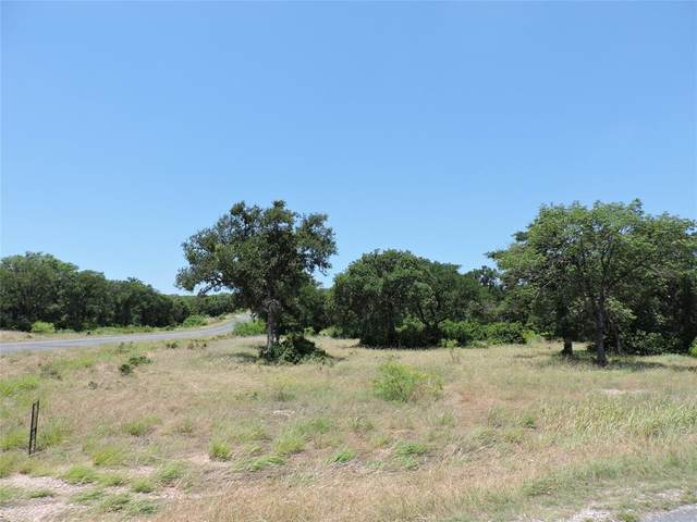 Lot 28 Cote D Azur Drive, Chico, TX 76431 (MLS #14299693) :: The Mitchell Group
