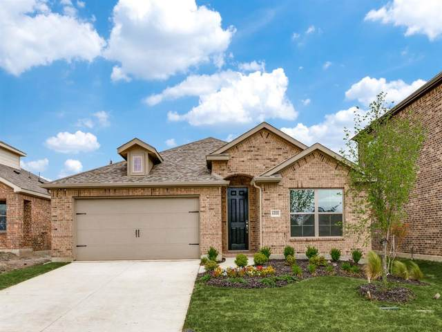 2307 Mount Olive Lane, Forney, TX 75126 (MLS #14300505) :: All Cities USA Realty