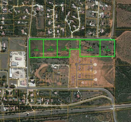 TBD Litel Street, Buffalo Gap, TX 79508 (MLS #14301438) :: Ann Carr Real Estate