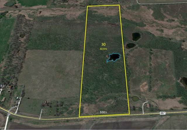30 acre Fm 667, Frost, TX 76641 (MLS #14302030) :: The Heyl Group at Keller Williams