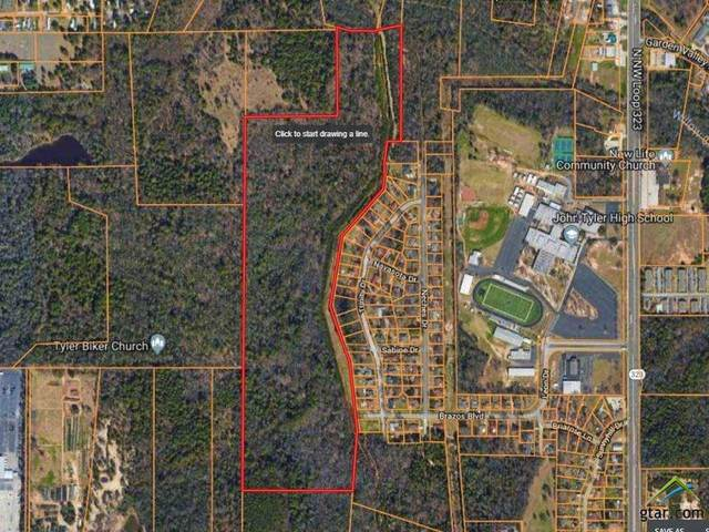 4141 Brazos Boulevard, Tyler, TX 75703 (MLS #14302808) :: Tenesha Lusk Realty Group