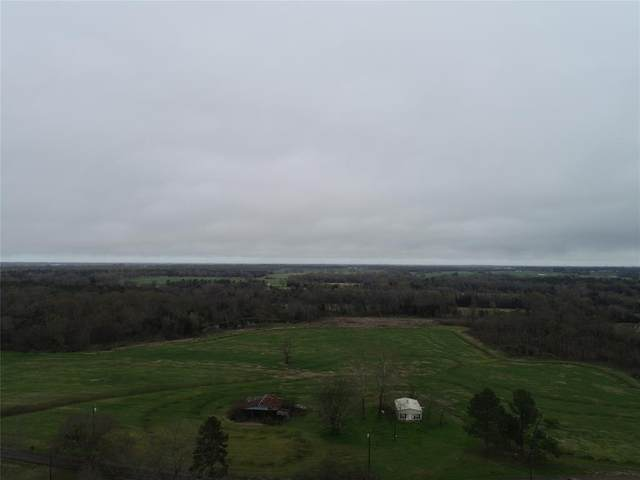 1141 County Road 2382, Pickton, TX 75471 (MLS #14303056) :: The Hornburg Real Estate Group