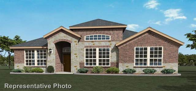 203 Morning Glory, Red Oak, TX 75154 (MLS #14303478) :: The Kimberly Davis Group