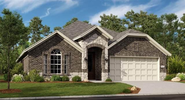 10117 Prairie Drive, Frisco, TX 75035 (MLS #14303664) :: The Kimberly Davis Group